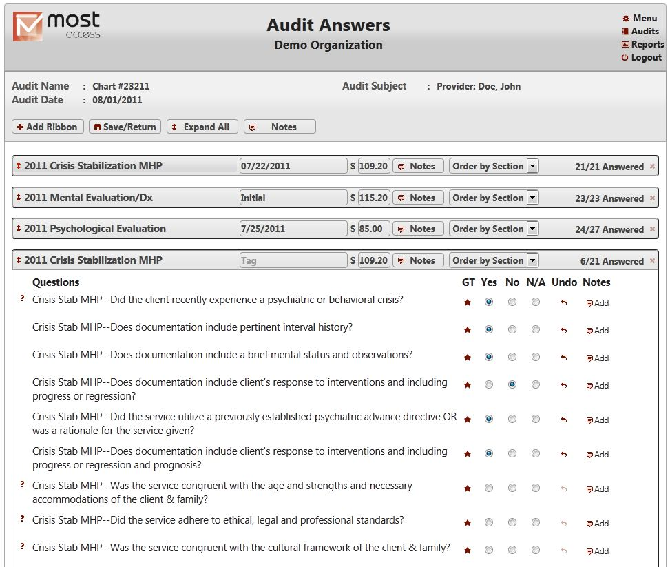 Audit Answers Screenshot